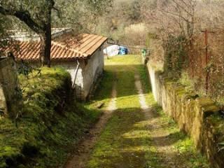 Foto - Rustico / Casale, buono stato, 90 mq, Palombara Sabina