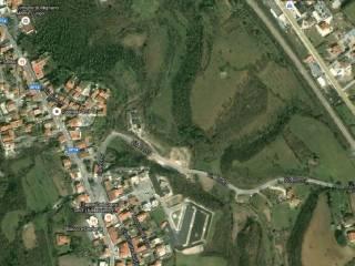 Foto - Terreno agricolo in Vendita a Mignano Monte Lungo
