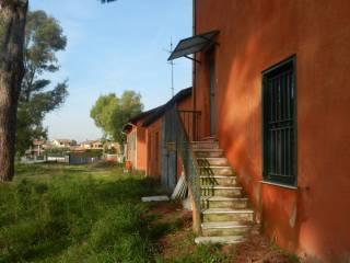 Foto - Rustico / Casale, da ristrutturare, 1200 mq, Monte Sacro, Roma
