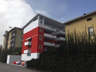Foto - Quadrilocale nuovo, primo piano, Molinetto, Parma