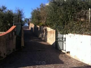 Foto - Villa 90 mq, Castelnuovo Di Porto
