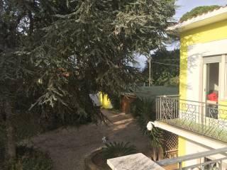 Foto - Villa 318 mq, Cerveteri