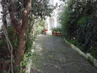 Foto - Trilocale buono stato, piano terra, Ischia Porto, Ischia