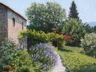 Rustico / Casale Vendita Orvieto