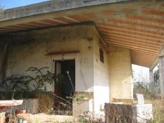 Foto - Rustico / Casale, da ristrutturare, 875 mq, Galatone
