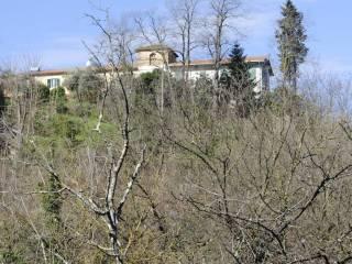 Foto - Rustico / Casale, da ristrutturare, 2473 mq, Santa Maria A Monte