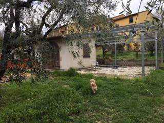 Foto - Rustico / Casale Localita Castellare, Palaia