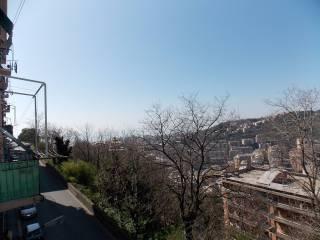 Foto - Trilocale via Pietro Balestrazzi, Oregina, Genova