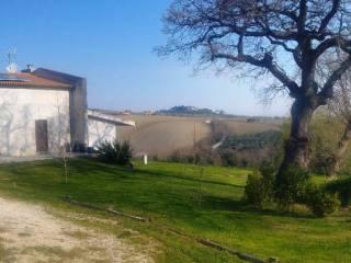 Foto - Villa Contrada SSan Crocifisso 12, Treia