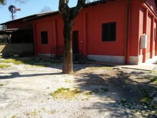 Foto - Villa via dei Licheni, Ardea