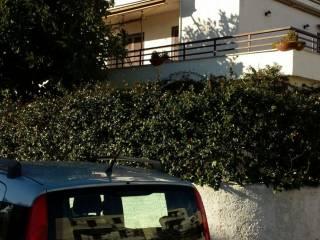 Foto - Bilocale via del Pino Insigne 25, Marina Di Cerveteri, Cerveteri