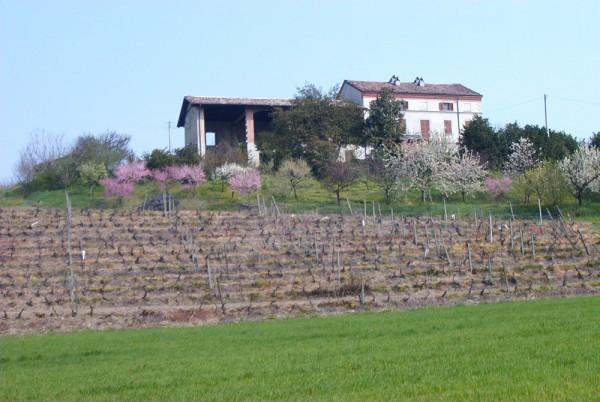 Altro in Vendita a Ozzano Monferrato