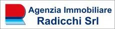 Logo agenzia Agenzia Tecnico Immobiliare Geom. Emilio Radicchi s.r.l.