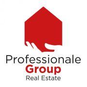 Professionale Group Professionale Group