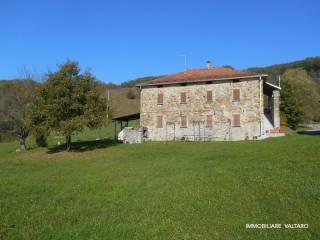 Foto - Casale Località Bertorella, Albareto