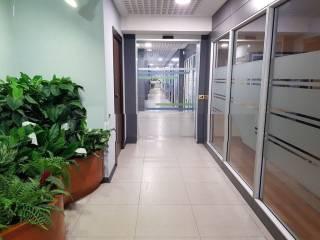 Uffici in affitto in zona Eur, Roma - Immobiliare.it