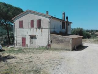 Foto - Rustico, da ristrutturare, 240 mq, Magliano in Toscana