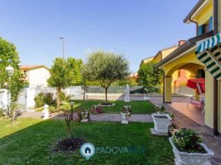 Foto - Villa bifamiliare via Giuseppe Verdi 42, Tribano