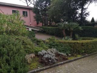 Foto - Appartamento via del Vergaiolo, Pieve a Nievole