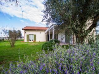 Foto - Villa unifamiliare Strada Querciolare, Pescia Romana, Montalto di Castro
