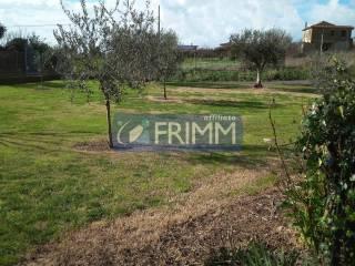 Photo - Farmhouse via Valle del Canneto, Zona Valcanneto, Ceri, Borgo San Martino, Cerveteri