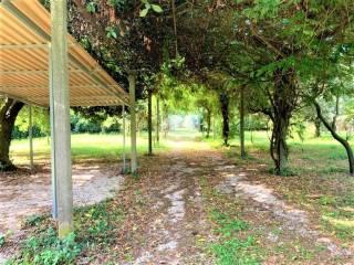 Foto - Villa unifamiliare via Casilina 220, San Cesareo