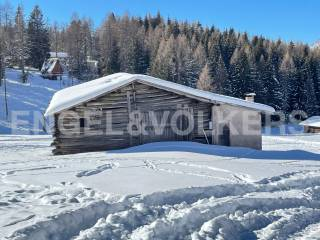 Foto - Chalet, da ristrutturare, 295 mq, Bellamonte, Predazzo