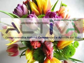 Attività / Licenza Vendita Rivalta di Torino