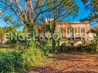 Foto - Villa unifamiliare, da ristrutturare, 201 mq, Zafferana Etnea