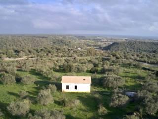 Foto - Casa colonica, nuovo, 144 mq, Orosei