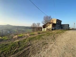 Foto - Rustico Località Casa del Vento, Ziano Piacentino