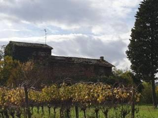 Foto - Rustico, da ristrutturare, 200 mq, Castiglione in Teverina