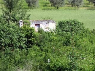 Foto - Rustico, da ristrutturare, 160 mq, Faicchio