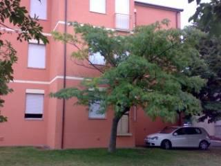 Appartamento Vendita Carpegna
