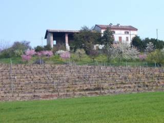 Rustico / Casale Vendita Ozzano Monferrato