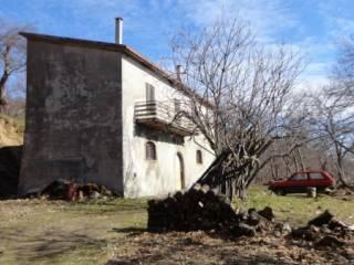 Foto - Terreno agricolo in Vendita a Roccamonfina