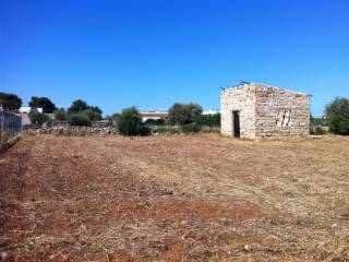 Foto - Terreno agricolo in Vendita a Cinisi