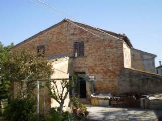 Foto - Rustico via Vergineto alto, Virgineto-alto, Terre Roveresche