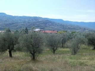 Foto - Terreno edificabile residenziale a Allerona