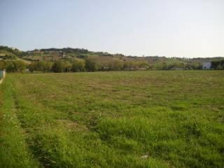 Foto - Terreno edificabile commerciale a Loreto