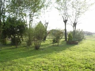 Photo - Farmhouse via Fontana 5, Ponzina, Legnago
