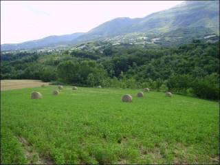 Foto - Terreno agricolo in Vendita a Civitella del Tronto