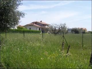 Foto - Terreno edificabile residenziale a Sant'Egidio alla Vibrata