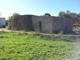 Foto - Terreno agricolo in Vendita a Tiggiano