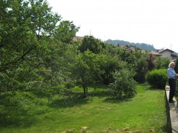 foto  Terreno edificabile residenziale a Gavirate