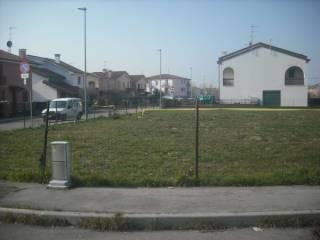 Foto - Terreno edificabile residenziale a Polesella