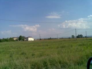 Foto - Terreno edificabile residenziale a Felino