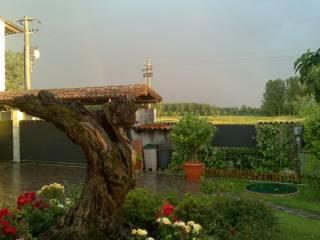 Foto - Villa via Stricciola 38, Alagna