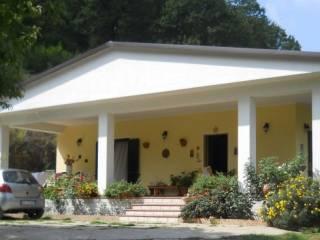 Foto - Villa Contrada Acqua degli Angeli 2, Cetraro
