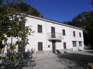 Foto - Rustico / Casale, buono stato, 600 mq, Rocchetta Palafea